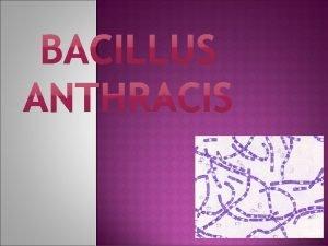 Enfermedad infecciosa aguda que normalmente afecta a vertebrados