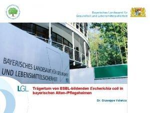Trgertum von ESBLbildenden Escherichia coli in bayerischen AltenPflegeheimen