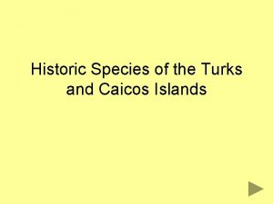 Historic Species of the Turks and Caicos Islands