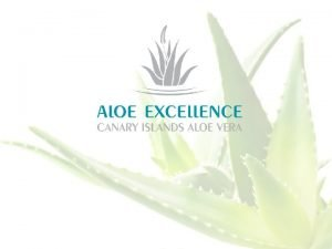 ALOE VERA THE MOST REGENERATIVE PLANT Aloe Vera