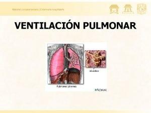 VENTILACIN PULMONAR Funciones Generales del Sistema Respiratorio Regulador