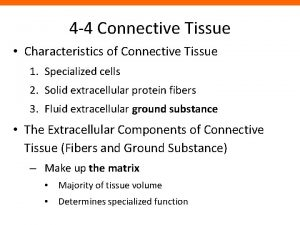 4 4 Connective Tissue Characteristics of Connective Tissue