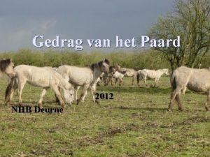 Gedrag van het Paard 2012 NHB Deurne Inleiding