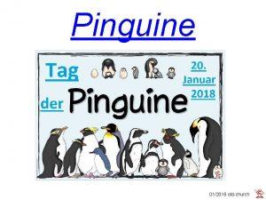 Pinguine 012018 oldchurch Die Pinguine sind eine Gruppe