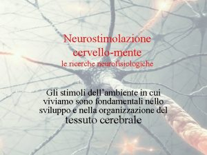 Neurostimolazione cervellomente le ricerche neurofisiologiche Gli stimoli dellambiente