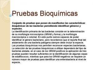 Pruebas Bioqumicas Conjunto de pruebas que ponen de