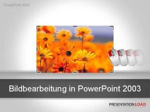 Power Point 2003 Bildbearbeitung in Power Point 2003