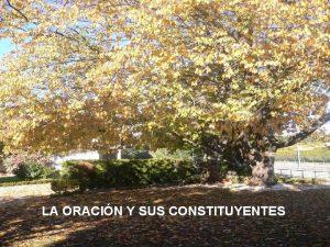 LA ORACIN Y SUS CONSTITUYENTES La oracin La