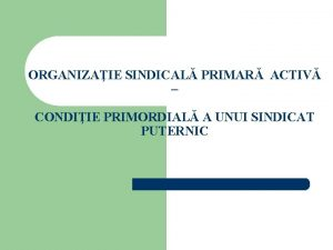 ORGANIZAIE SINDICAL PRIMAR ACTIV CONDIIE PRIMORDIAL A UNUI