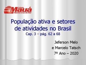 Populao ativa e setores de atividades no Brasil