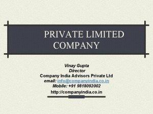 PRIVATE LIMITED COMPANY Vinay Gupta Director Company India