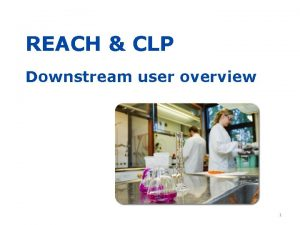 REACH CLP Downstream user overview 1 Purpose of