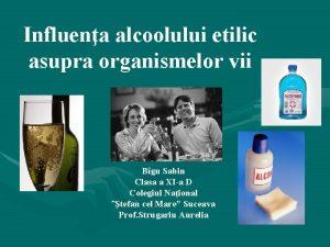 Influena alcoolului etilic asupra organismelor vii Bgu Sabin