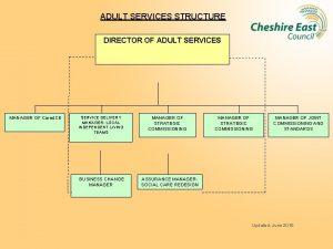ADULT SERVICES STRUCTURE DIRECTOR OF ADULT SERVICES MANAGER
