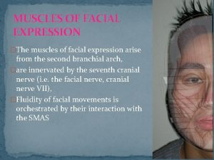 MUSCLES OF FACIAL EXPRESSION The muscles of facial