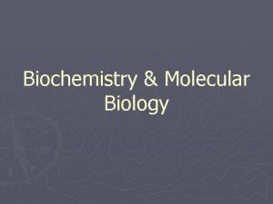 Biochemistry Molecular Biology Outline Biochemistry and function of
