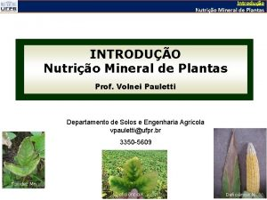 Introduo Nutrio Mineral de Plantas INTRODUO Nutrio Mineral