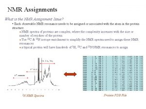NMR Assignments What is the NMR Assignment Issue