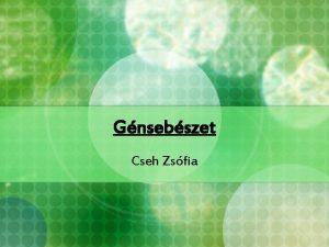 Gnsebszet Cseh Zsfia A c DNS trak Plazmidba