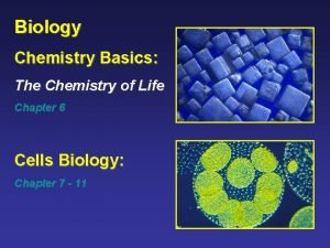 Biology Chemistry Basics The Chemistry of Life Chapter
