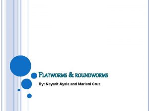 FLATWORMS ROUNDWORMS By Nayarit Ayala and Marleni Cruz