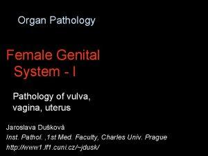Organ Pathology Female Genital System I Pathology of