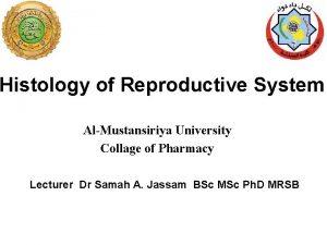 Histology of Reproductive System AlMustansiriya University Collage of