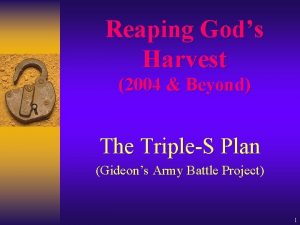Reaping Gods Harvest 2004 Beyond The TripleS Plan
