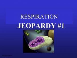RESPIRATION JEOPARDY 1 S 2 C 06 Jeopardy