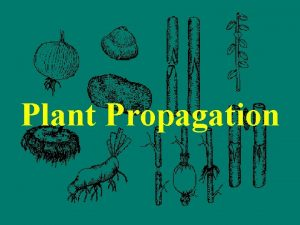 Plant Propagation Plant propagation the art and science
