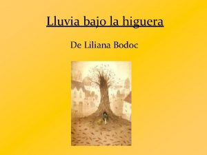 Lluvia bajo la higuera De Liliana Bodoc La