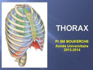 THORAX Pr SM BOUKERCHE Anne Universitaire 2013 2014