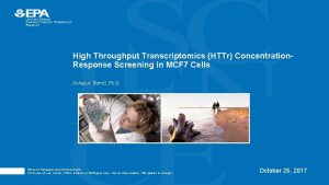 High Throughput Transcriptomics HTTr Concentration Response Screening in