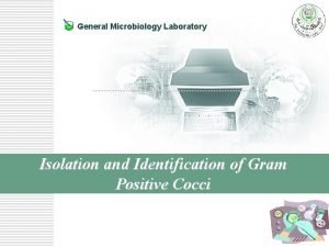 General Microbiology Laboratory Isolation and Identification of Gram
