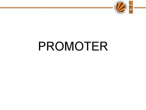 PROMOTER WHO IS A PROMOTER The promoter is