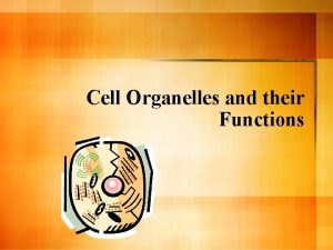 Cell Organelles and their Functions Cells l Cells