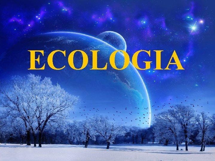 ECOLOGIA ECOLOGIA A palavra ecologia vem do grego