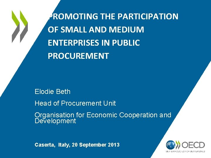 PROMOTING THE PARTICIPATION OF SMALL AND MEDIUM ENTERPRISES