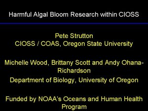 Harmful Algal Bloom Research within CIOSS Pete Strutton