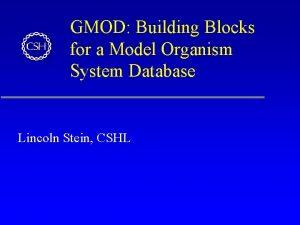 GMOD Building Blocks for a Model Organism System