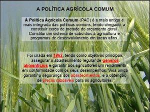 A POLTICA AGRCOLA COMUM A Poltica Agrcola Comum