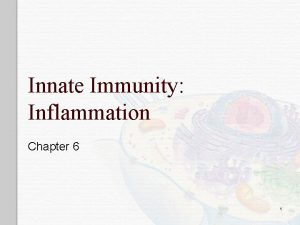 Innate Immunity Inflammation Chapter 6 1 Immunity o