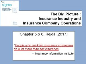 The Big Picture Insurance Industry and Insurance Company