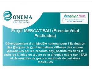 Projet MERCATEAU Pressiontat Pesticides Dveloppement dun Modle national