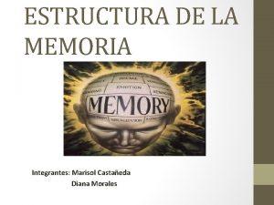 ESTRUCTURA DE LA MEMORIA Diana Morales Integrantes Marisol