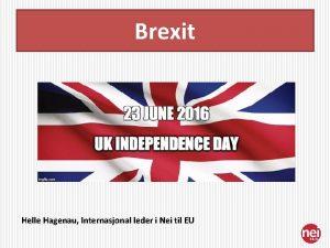 Brexit Helle Hagenau Internasjonal leder i Nei til