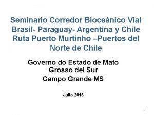 Seminario Corredor Biocenico Vial Brasil Paraguay Argentina y