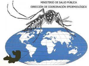 MINISTERIO DE SALUD PBLICA DIRECCIN DE COORDINACIN EPIDEMIOLGICA