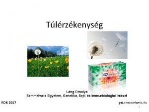 Tlrzkenysg Lng Orsolya Semmelweis Egyetem Genetika Sejt s