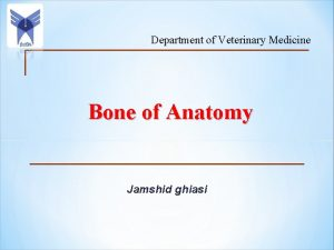 Department of Veterinary Medicine Bone of Anatomy Jamshid